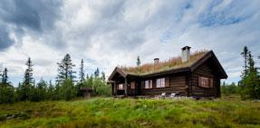 Hus og hytter i tradisjonell laft