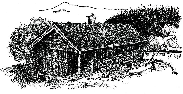 """Berg&Wien Massivtre: """"Sagbu"""", tradisjonell hytte i håndlaft på ett plan. Utført som på tegningen, har hytta et bebygd areal på 66,4 kvadratmeter."""